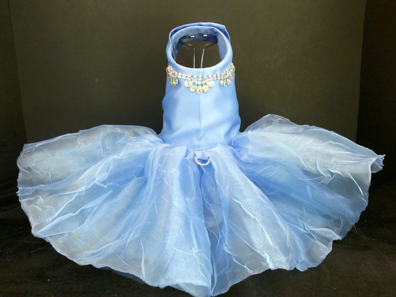 زفاف - Exquisite in Blue! XXSmall to 4XLarge Dog Dress, Dog Tutu, Dog Harness, Wedding Dress,  Harness Dress, Pet Clothes, Couture Dog Dress