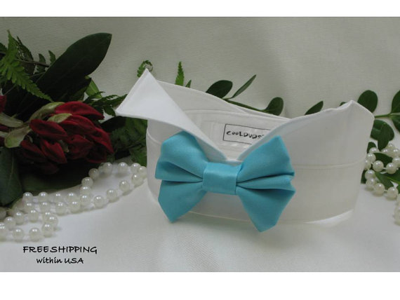 Wedding - Aquamarine Satin Dog Bow on Wingtip Tuxedo Collar~Dog Ring Bearer~Bow Tie Dog Collar~Pet Bow Tie~Dog Tuxedo~BowTie~Free Shipping Within USA~