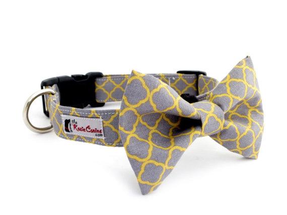 زفاف - Gray and Yellow Dog Collar (Grey and Yellow Dog Collar Only - Matching Bow Tie Available Separately)