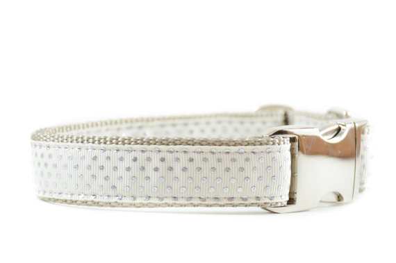 زفاف - Ivory and Silver Dog Collar, Shimmer Polkadotted Metal Buckle Wedding Dog Collar