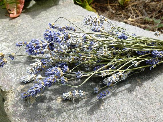 Mariage - Dried Lavender Bunch Bouquet Tied with Jute Cord - Rustic - 2015 Crop