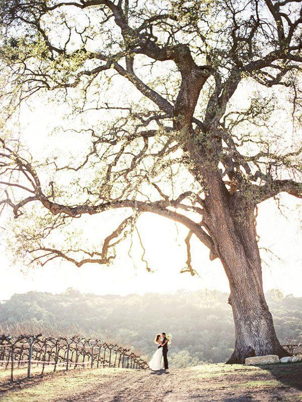 Свадьба - Rustic Sophistication Wedding Shoot In Wine Country