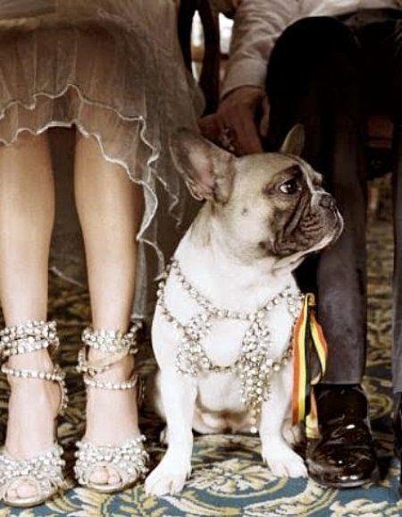 Свадьба - {weekend Indulgence & Shopbop Winner}