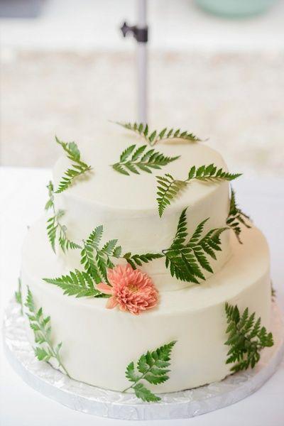 Wedding - Fern Wedding Details