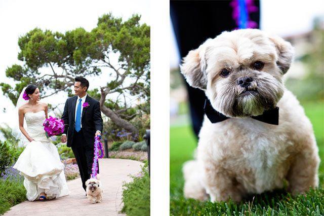 Свадьба - Real Wedding: Patricia & Ed