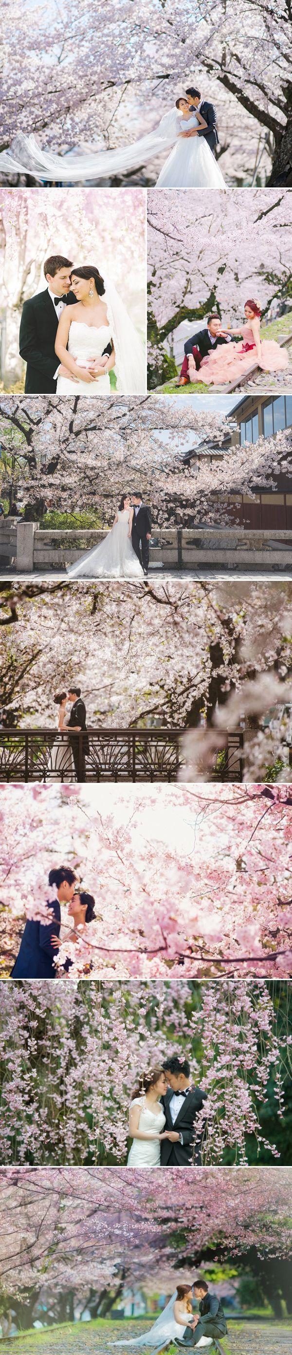 Mariage - 25 Stunning Cherry Blossom Wedding Photos You Will Love