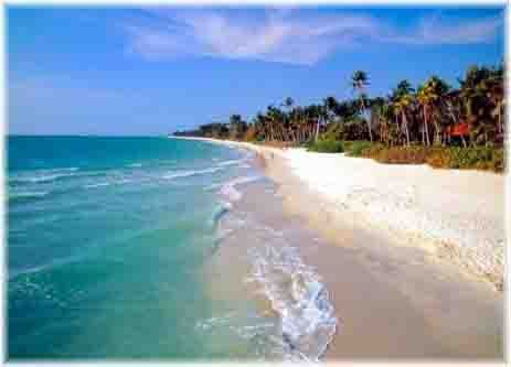 Wedding - Best Florida Family Beach Vacations; Naples Vacations