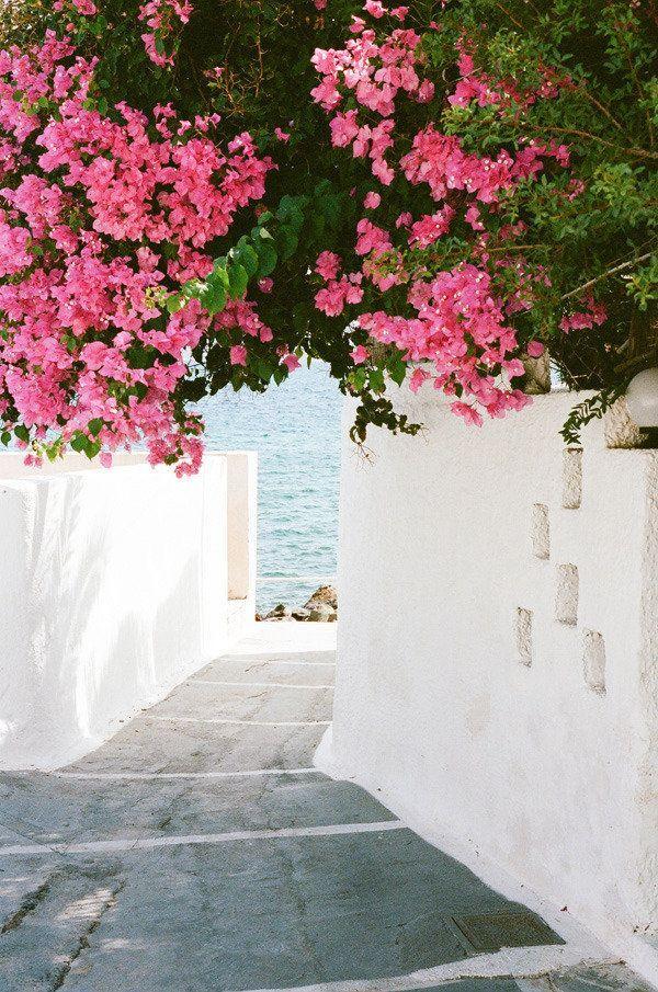 زفاف - A Vacation In Greece From Sarah Yates
