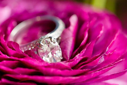 Mariage - The Rose Garden
