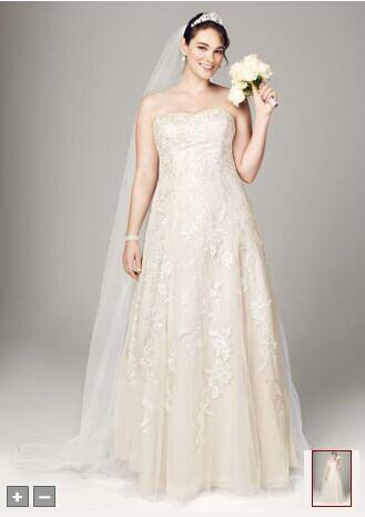 Plus Size Wedding Dresses Ivory/White Organza And Lace Chaple ...