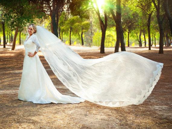 Mariage - Long Lace Veil