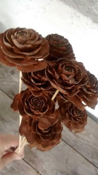 """زفاف - Pinecone Cedar Rose Stems  (10 stems) 12"""" long - Perfect For Rustic Country Weddings"""