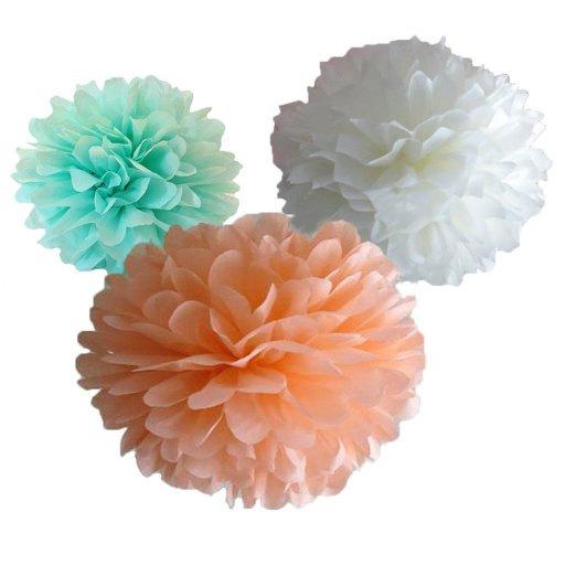 زفاف - 12 Mint Green, Peach/Blush Pink & White Tissue Pom Pom Set