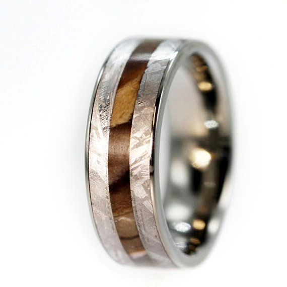 Mariage - Petrified Wood Ring, Gibeon Meteorite inlaid on a Titanium Ring Engraving Available