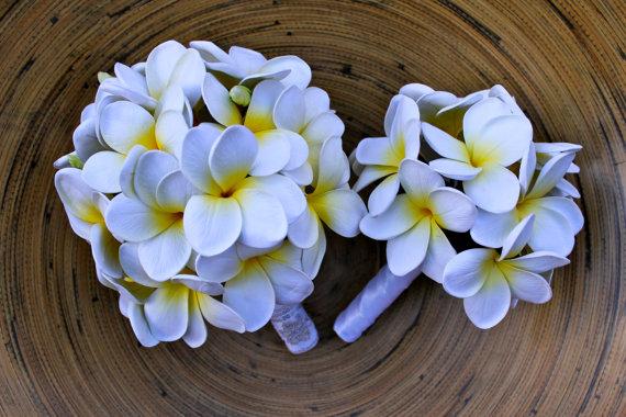 Hochzeit - Plumeria Frangipani Package