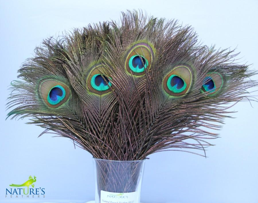 Mariage - Peacock Feathers about 10-12 Inches High Quality Natural Feathers (50pcs)