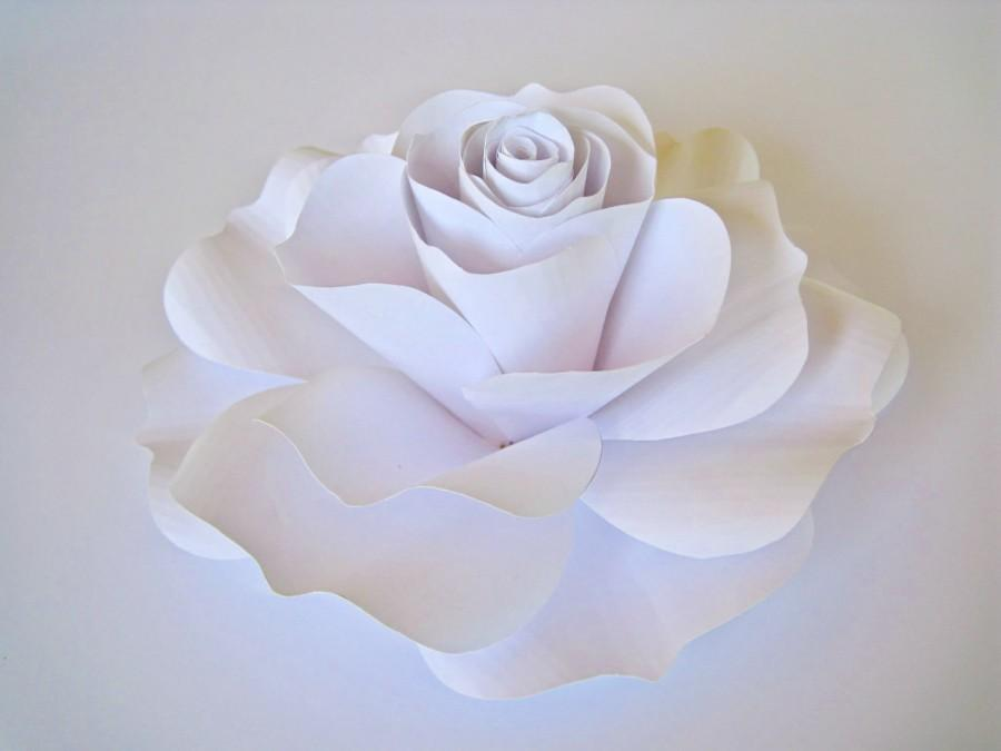 essay on the white rose The white rose the white rose is a story about a group led by hans scholl and his sister sophie, students at a german university who took a stand against their country.