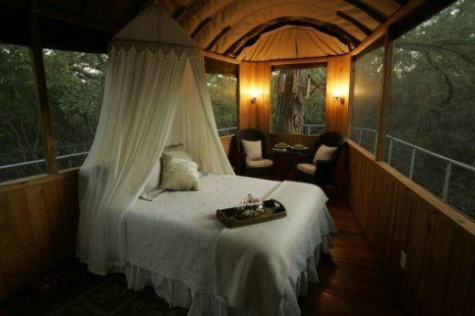 زفاف - Tree House Hotel