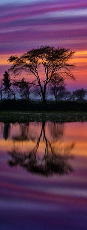 Hochzeit - ☼ Sunset Colors ☼