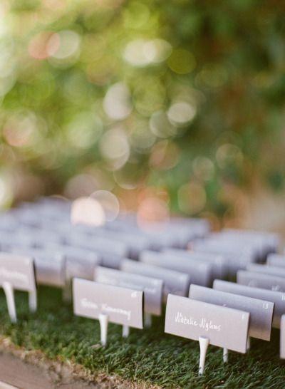 Wedding - Image #449042