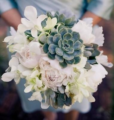 Свадьба - Echeveria, light pink peony white dendrobium orchid and dusty miller bouquet