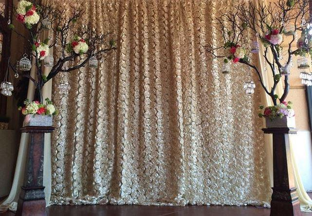 Chiffon Rosette Photo Backdrop Photo Booth Backdrop Photography