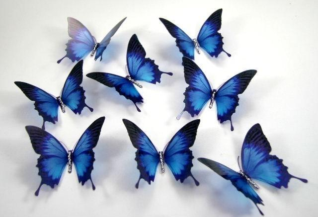 Mariage - 5 x 3D Ulysses Stick on Butterflies, Wedding Cake Toppers, 3D Wall Art