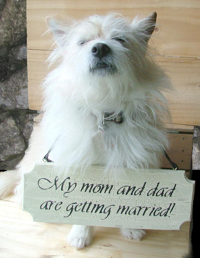 Wedding - Custom Wedding, Save the Date or Engagement Sign - For Small Dog -  Reclaimed Wood Sign