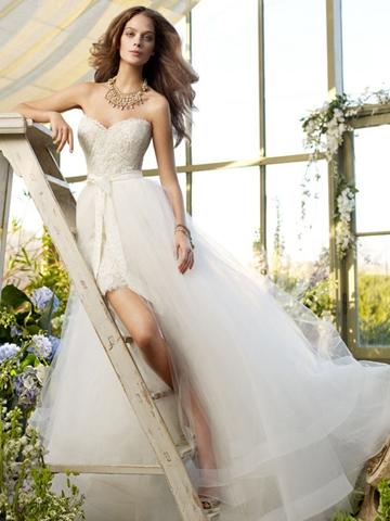 Mariage - Lace Short Wedding Dress Tulle Overskirt with Horsehair Accented Hem and Chapel Train