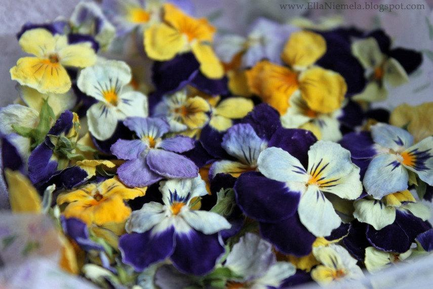 Edible Real Flowers For Cake Decorating : Dry Flowers, Dried Violas, Edible Flowers, Wedding, Cake ...
