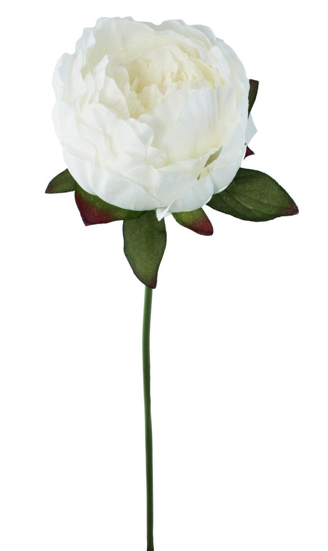 Свадьба - Ivory Peony Stem - Silk Peony Ivory - Wedding Flowers