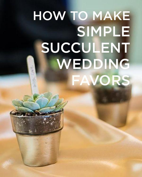 Hochzeit - Succulent Wedding Favors - A Simple And Beautiful Favor Idea!