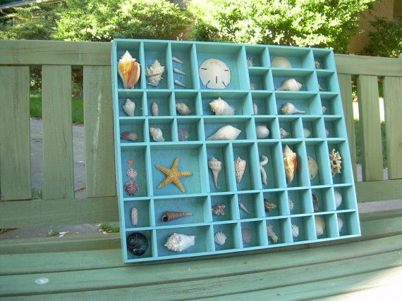Wedding - Shell Collection In A Turquoise Printer's Tray