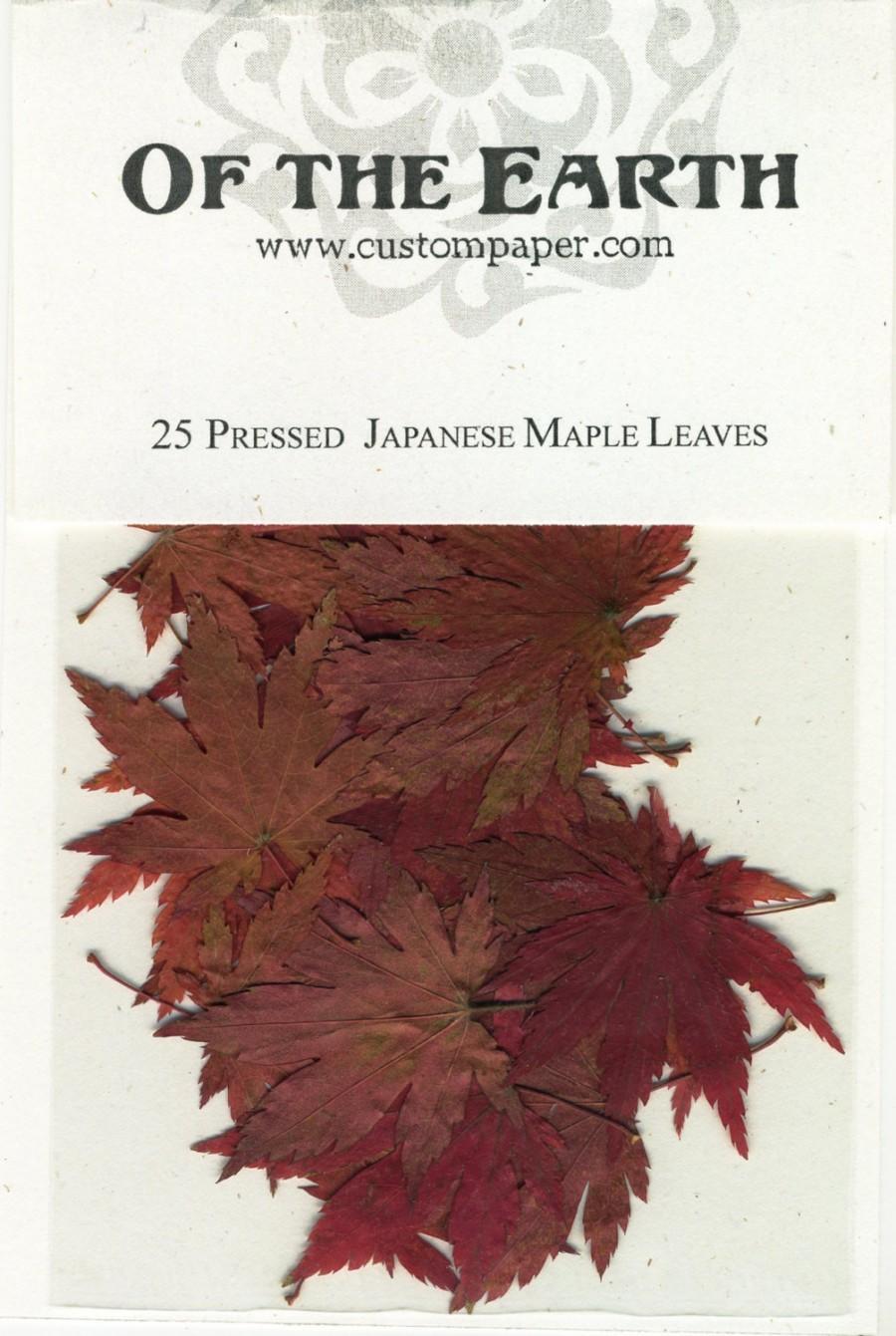 Mariage - Japanese Maple Leaf Pressed Botanical - pack of 25 1.25 inch diameter Flat Rustic Decor