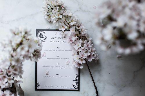 Mariage - Clams In Chardonnay Saffron Mint Broth