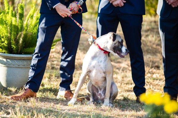 زفاف - Heartfelt North Texas Ranch Wedding