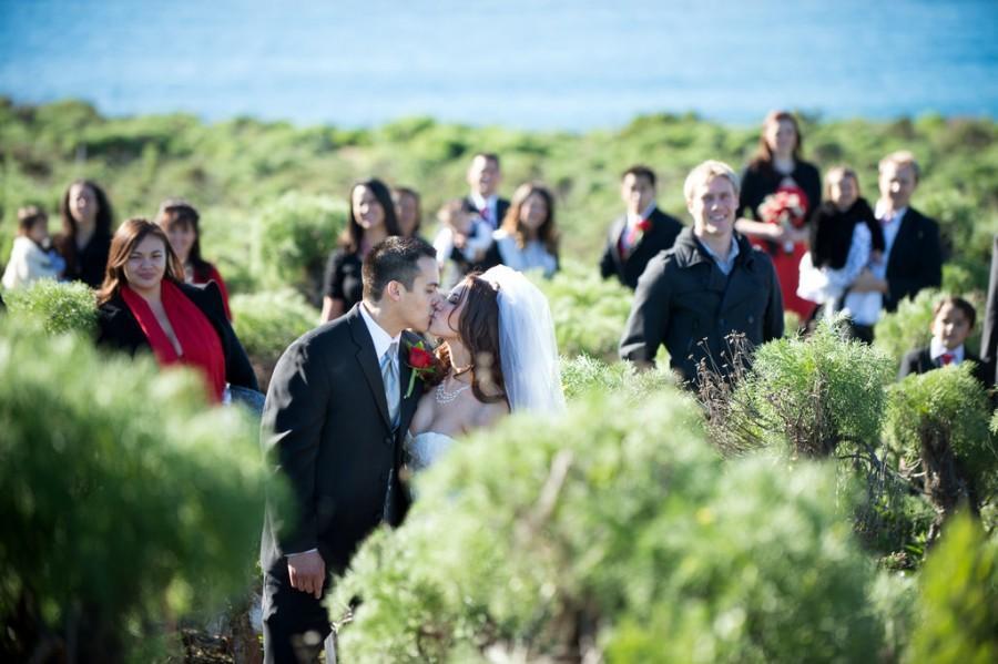Wedding - Wedding Creepers