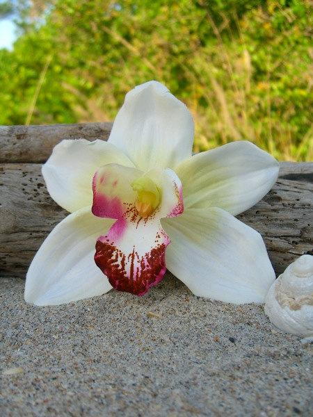 Свадьба - Orchid Flower Hair Clip,Weddings, Beach Destination Weddings, White Orchid,Vacations,Tropical Flowers,Hawaiian,Paradise, Floral Hair Clip,