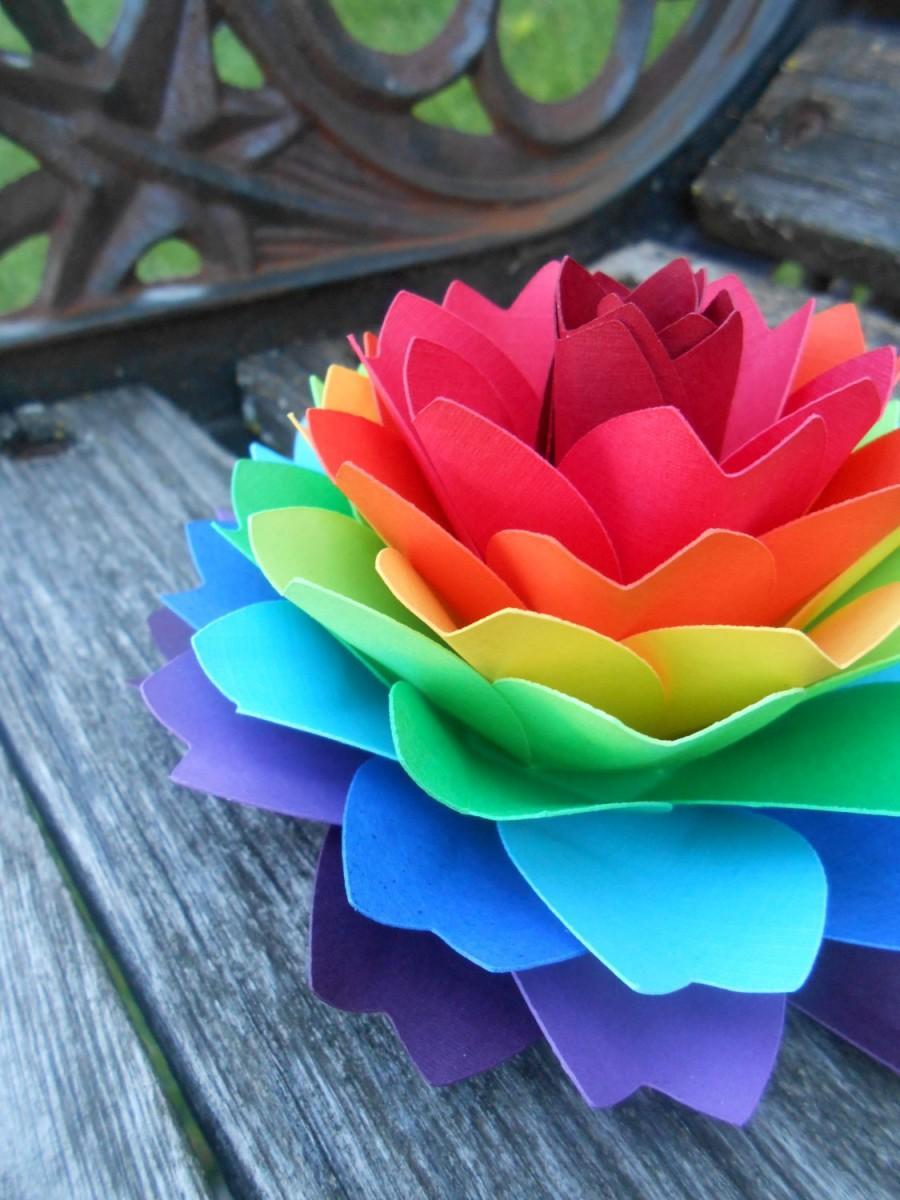 rainbow dahlia flower