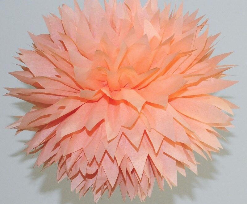 Peach Tissue Paper Pom Poms, Peach Bridal Shower, Peach Birthday Party  Paper Decorations, Peach Wedding Decorations, Peach Baby Shower