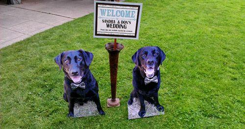 زفاف - Hot New Wedding Ideas From Planners & Designers
