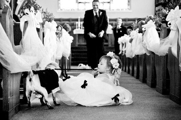 Hochzeit - That's Hilarious! 12.20.12 Hilarious Flower Girl Photo By Vue Photography