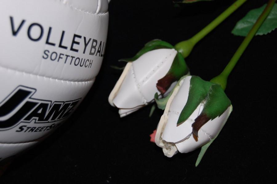 Hochzeit - Volleyball  Sport bud Rose