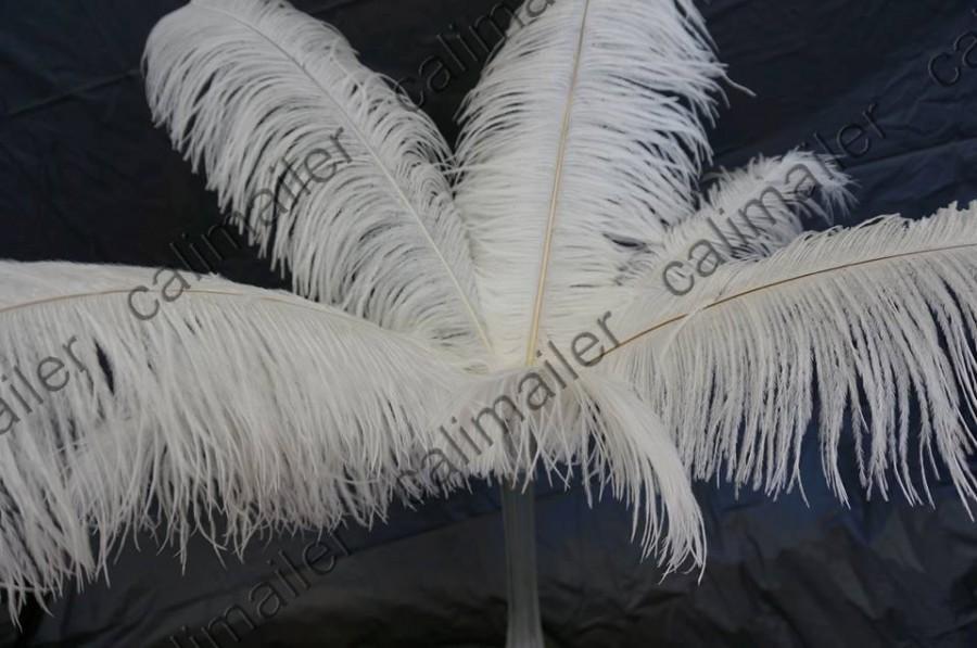 Mariage - 50 Piece White Ostrich Feather 10-24 inches for Wedding Centerpiece decoration