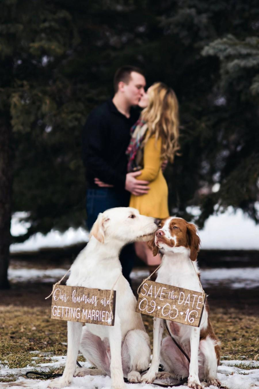 Mariage - Pet SaVe THe DaTe SiGn - Dog PHoTo PRoP SiGn - Calligraphy Lettering - Pet Wedding SiGnS - RuSTic WeDDing SiGn - Rustic Dark Stain 10 x 5