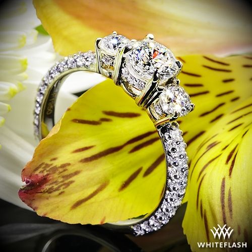 "Mariage - Platinum ""Rounded Pave"" 3 Stone Engagement Ring"