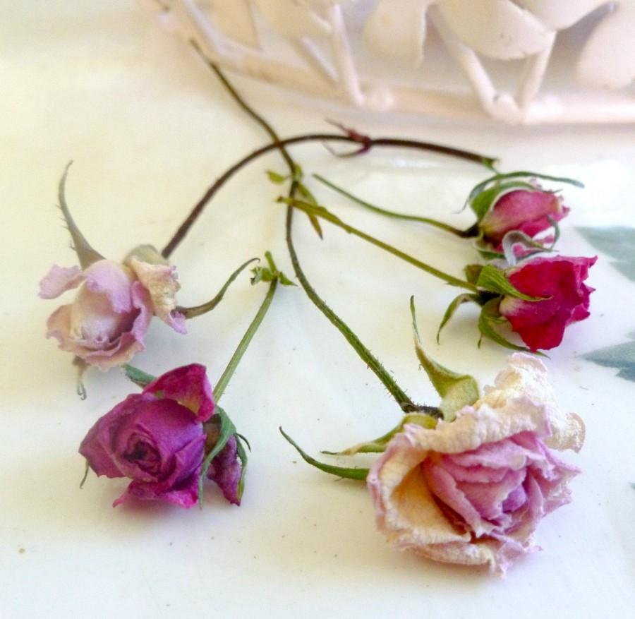 Dried Pink Rosebuds, Dried Roses, Wedding Decorations, Craft ...