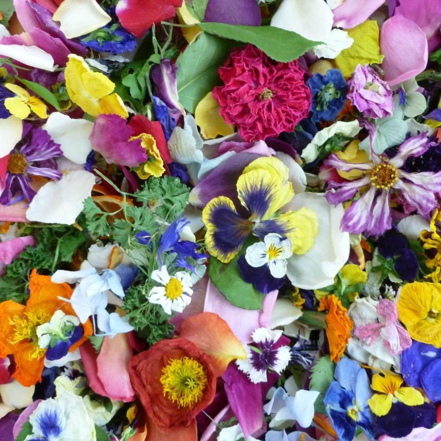 Свадьба - Flower Confetti, Real Flowers, Autumn,  Wedding Confetti, Flower Petals, Dried Flowers, Petal Confetti, Wedding Decor, Sample 1/4 US cup