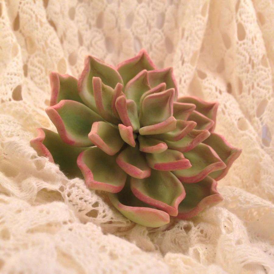 Hochzeit - Succulent sugar flower