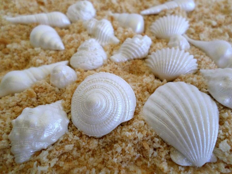Edible Shell Cake Decorations